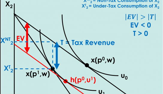 [Microeconomics] Welfare Evaluation