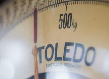 [건강&영양] 견종별 표준 몸무게